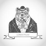 Vector illustration head ferocious bulldog mascot, on a white background vect Stock Illustration