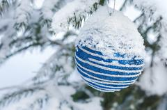 Christmas decoration ball on a snow-covered tree branches Stock Photos