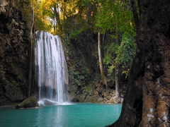 Scenic and exotic nature of tropical forest with waterfall stream HDR 4K video Arkistovideo