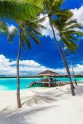 Empty hammock between palm trees on tropical beach with blue sky Stock Photos