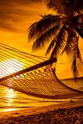 Hammock on a palm tree during beautiful sunset on Fiji Islands Stock Photos