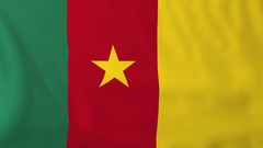Flag of Cameroon waving in the wind, seemless loop animation Stock Footage