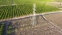 Flying orange fields and electric tower Stock Footage