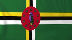 Flag of Dominica waving in the wind, seemless loop animation Stock Footage
