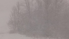 Blizzard conditions during snowsquall Stock Footage