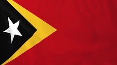 Flag of East Timor waving in the wind, seemless loop animation Stock Footage