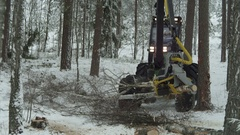 Footage of a green forwarder working in the forest in winter Stock Footage