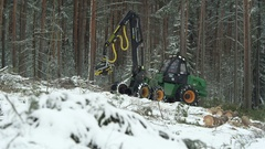 Big green forwarder destroying the live trees Stock Footage