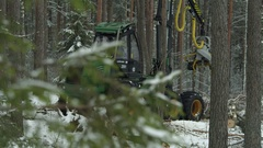 Cutaway of a forwarder working in the forest Stock Footage