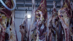 Carcass of raw meat beef pork hanging on hooks in the freezer to production Stock Footage