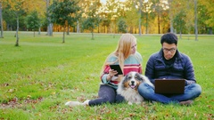 Friends relaxing on the lawn in the park. With them, the dog, the man uses a Stock Footage