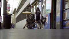 Dog sledding man on skateboard down sidewalk on Hollywood Blvd in Los Angeles Stock Footage