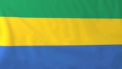 Flag of Gabon waving in the wind, seemless loop animation Stock Footage