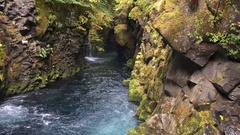 Blue stream and Fern covered Canyon Above Toketee Falls Douglas County Oregon Stock Footage