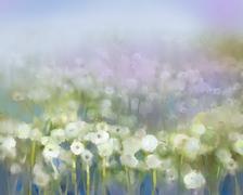 Oil paintings white dandelion flower in the meadows Piirros