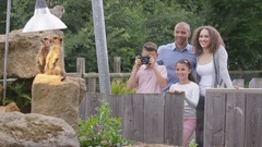 4K Happy family looking at meerkats & taking photos at wildlife park Stock Footage