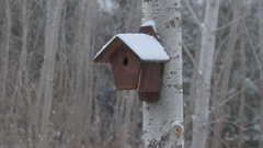Birdhouse with snow falling. Don Valley, Toronto, Ontario, Canada. Stock Footage