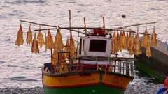 FISH DRYING RACKS ON BOAT CAMARA DE LOBOS MADEIRA Stock Footage
