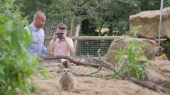 4K Happy father & son at the zoo, little boy taking photos of the meerkats Stock Footage