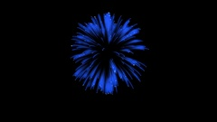 3D Render. Single Firework ball. Computer Graphic. Firework Display. Ver. 12 Stock Footage