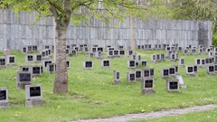 Black tombstones, Theresienstadt Jewish cemetery, Terezin, long shot Stock Footage