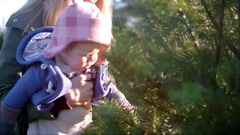A mother holding her baby girl up to look at a Christmas tree at a farm Stock Footage