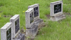 Black tombstones, Theresienstadt Jewish cemetery, Terezin, side view Stock Footage