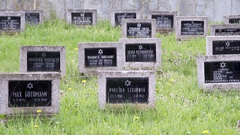 Black tombstones with names, Theresienstadt Jewish cemetery, Terezin Stock Footage