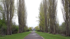 Theresienstadt Jewish cemetery tree entrance, stone Menorah memorial Stock Footage
