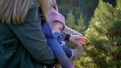A mother and father with their baby choosing a Christmas tree at a farm Stock Footage