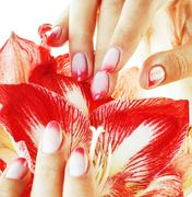 Beauty delicate hands with pink Ombre design manicure holding re Stock Photos