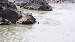 Man swims in holy Ganges river, Rishikesh, India Stock Footage