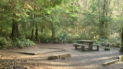 Empty Campground Olympic Peninsula Stock Footage