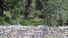 Stone wall hedge fence separates between land plots, Himalayas, India Stock Footage