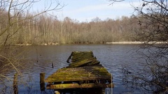 Rotting decaying broken boat dock, lake in forest, Germany Stock Footage