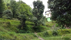 House building in Himalaya mountain forest, lush green terraces, India Stock Footage