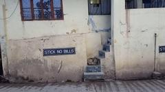 Stick No Bills sign on wall, filthy street dog sleeps, Mcleod Ganj, India Stock Footage