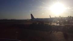 Air Serbia airplane at gate, jet bridge, sunrise, Ben Gurion airport, Israel Stock Footage