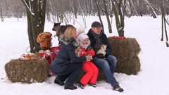 Young family with little girl husky dogs and deer in winter petting zoo nursery Stock Footage