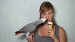 CLOSE UP: Portrait of beautiful woman and African grey parrot eating icecream Stock Footage