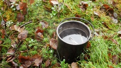 Mug tea outdoor in the forest on the moss Stock Footage