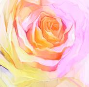 Oil Painting Close up of white rose flower Stock Illustration