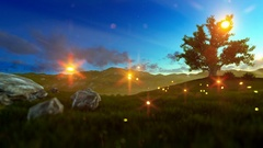 Fireflies over green meadow and tree of life at sunrise Stock Footage