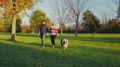Multiethnic couple walking with a dog in the autumn park Stock Footage
