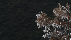 Hoarfrost on a twig above a rippling river Stock Footage