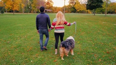 Young carefree couple walking with a dog in the park. Back view Stock Footage
