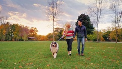 Young carefree couple walking with a dog in the park. Steadicam shot Stock Footage