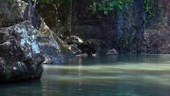Cedar Creek Falls, Pond Stock Footage
