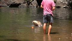 Cedar Creek Falls, Dog Shaking off water, slow motion Stock Footage