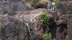 Cedar Creek Falls, Nature Outdoor Stock Footage